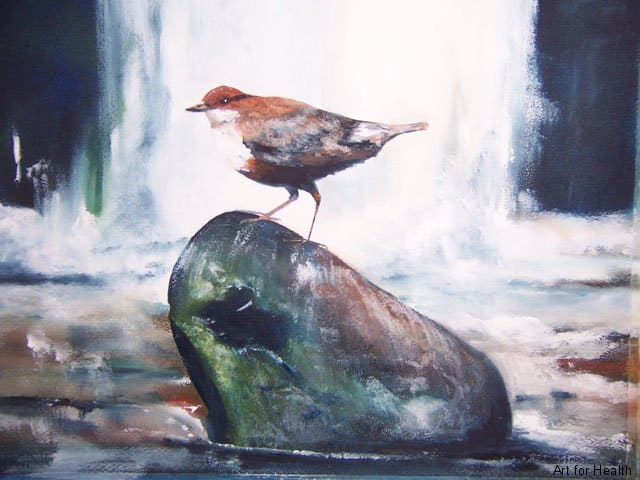 Dipper by the Falls